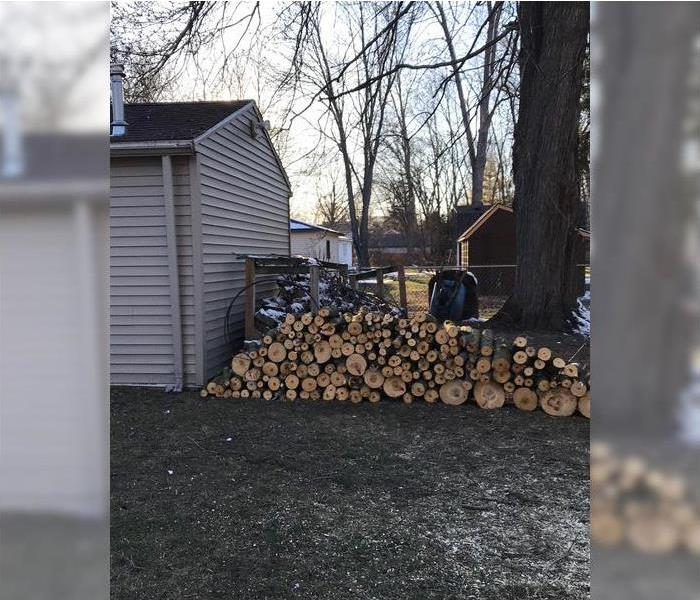 Tree Felled During Ice Storm After
