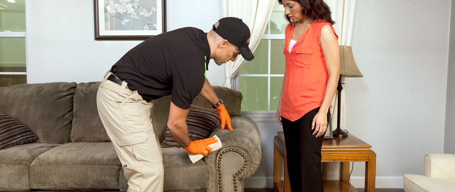 Dearborn, MI carpet upholstery cleaning