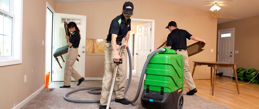 Dearborn, MI cleaning services
