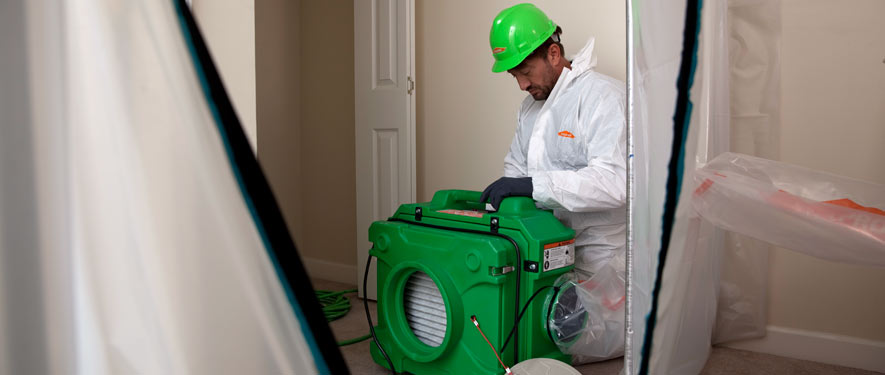 Dearborn, MI mold cleanup